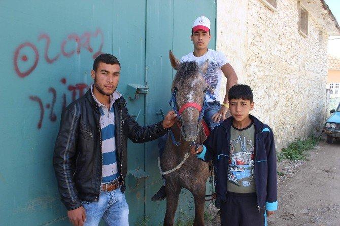 Bu Köyün Çocuklarının AT Sevgisi Sınır Tanımıyor
