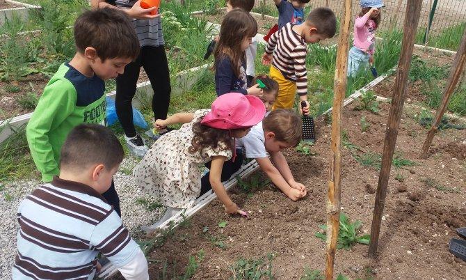 Minikler, sebze yetiştiriciliği kurslarını ziyaret etti