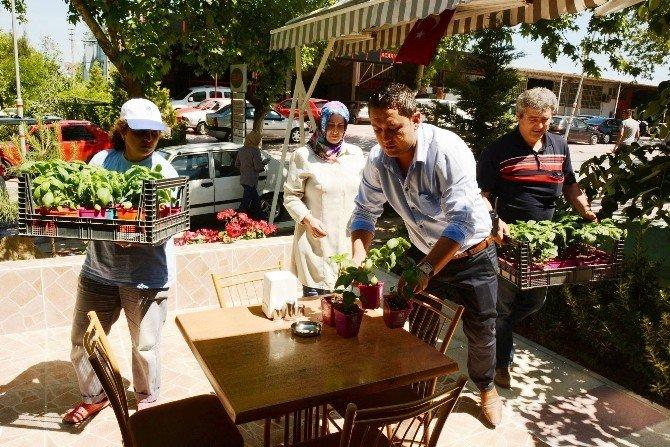 Yunusemre Belediyesi'nden Esnafa Çiçek Hediyesi