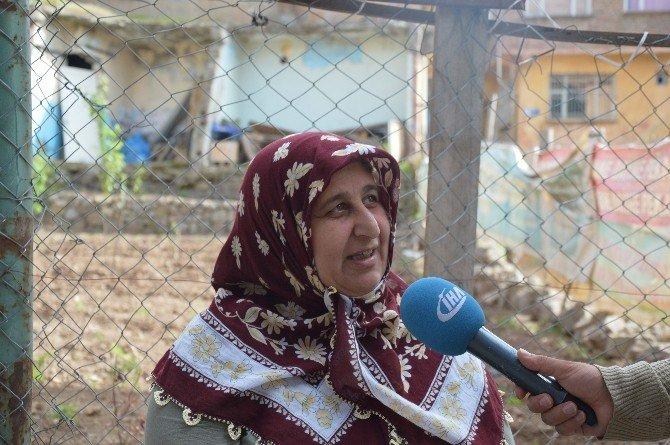 Sur'da Terörden Sonra Hastalık Ve Yılan Korkusu Baş Gösterdi
