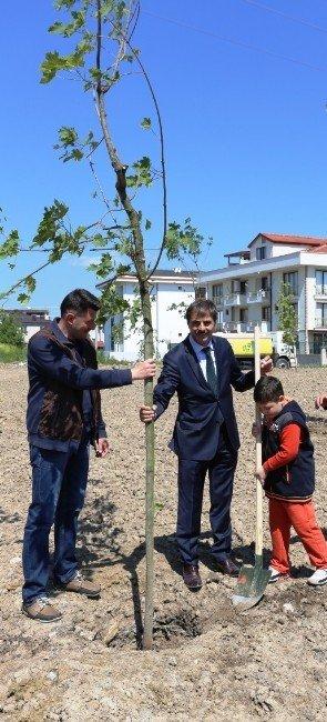 Başkan Alemdar Proje Kapsamında 'Bir Ağaç Dik, Bir Nesli Kurtar' Sloganıyla Fidan Dikti