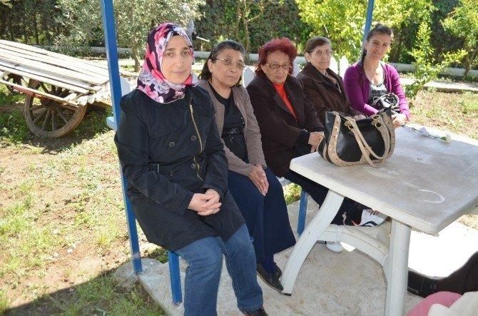 Burhaniye'de Yaşlılar Piknikde Moral Buldu