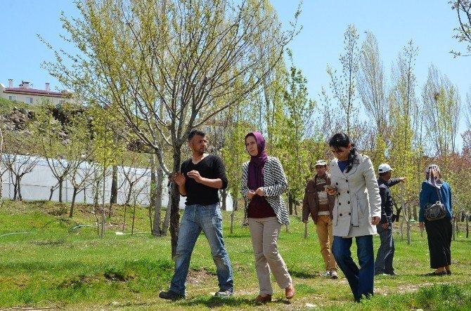 Erciş Belediyesi Sera Kuruyor