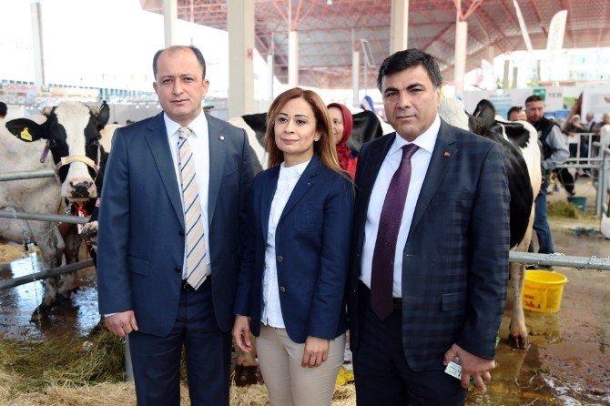Burdur'da Teke Yöresi Fuarına Yoğun İlgi