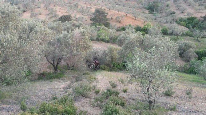 Muhtar Traktör Kazasında Öldü