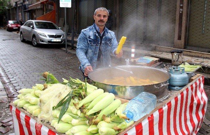Süt Mısır Piyasaya İndi