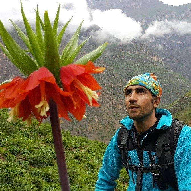 Dünyanın En Nadide Çiçeği Dağlara Renk Kattı