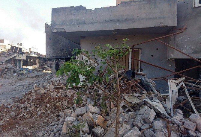 Teröristler Nusaybin'i Harabeye Çevirdi