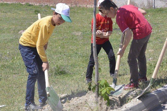 Tepebaşı'nda Bayram Gibi Ağaçlandırma