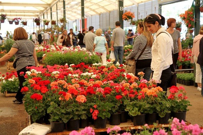 Karşıyaka'da Çiçek Kokacak Festival