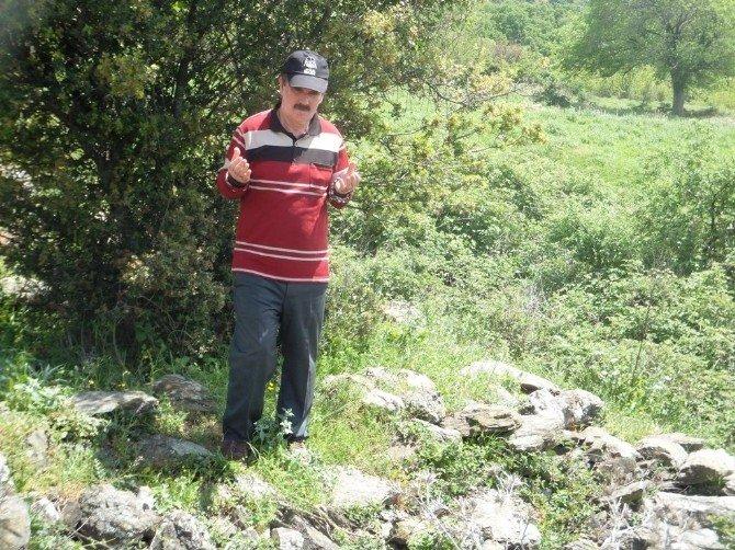 Ata Topraklarına Süleymanpaşa Belediyesi İle Kavuşuyorlar