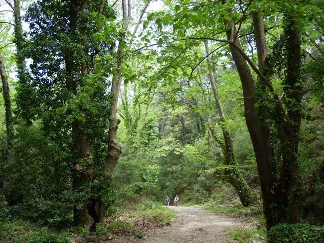 Milli Park İki Yıl Aradan Sonra Yine Sorun Oldu