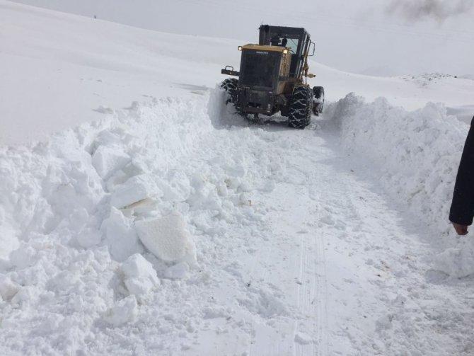 Siirt Valiliğinden 'kar' açıklaması