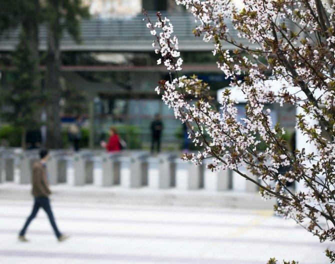 Bahar alerjisine karşı uzmanlardan altın uyarı