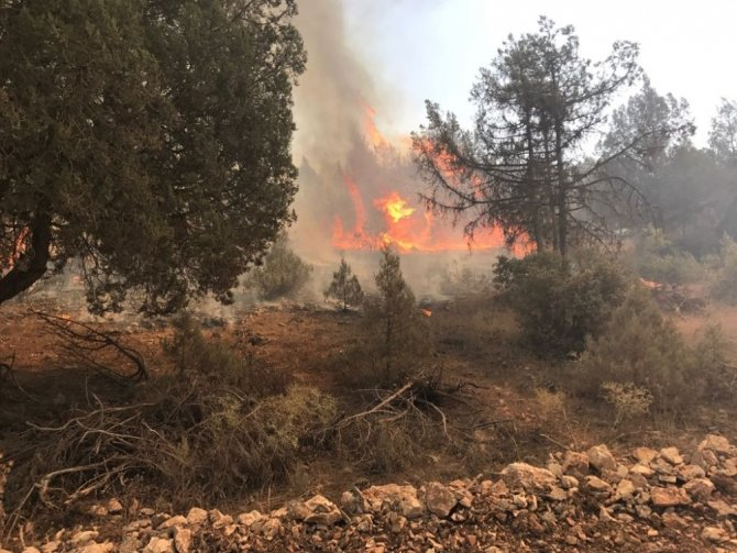 Balıkesir'de orman yangını sürüyor