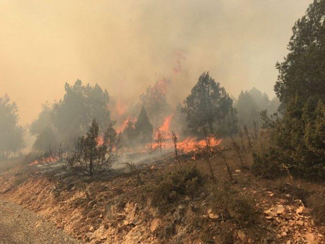 Dursunbey'de yaklaşık 100 hektar alan yangında zarar gördü