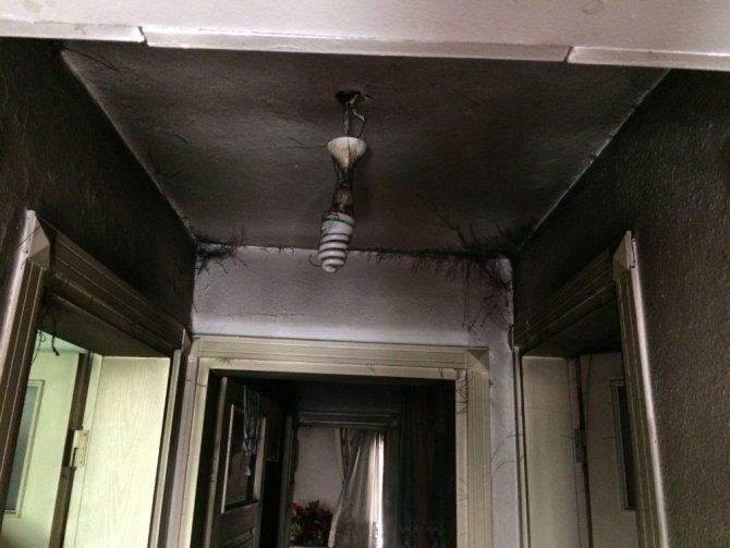 Ayvalık'ta elektrik süpürgesi yangın çıkardı