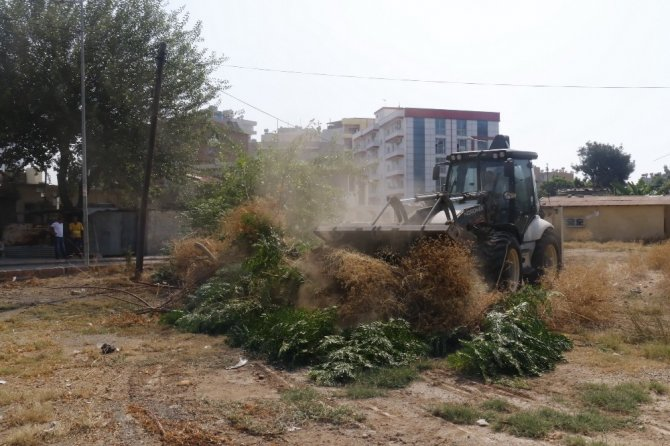 Akdeniz'de temizlik çalışmaları hız kazandı