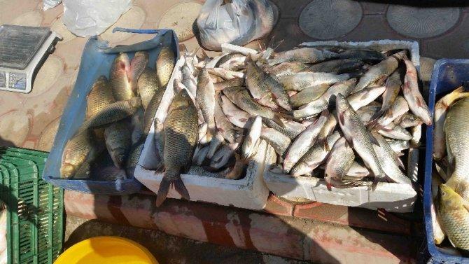 Kulp'ta baraj balığı tezgahtaki yerini aldı