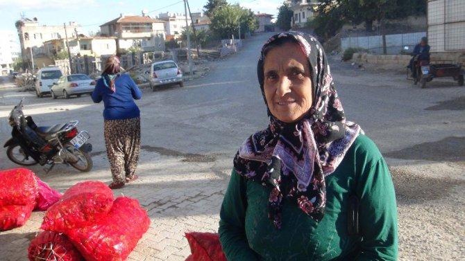 Ev hanımları salçalık biber alma telaşında