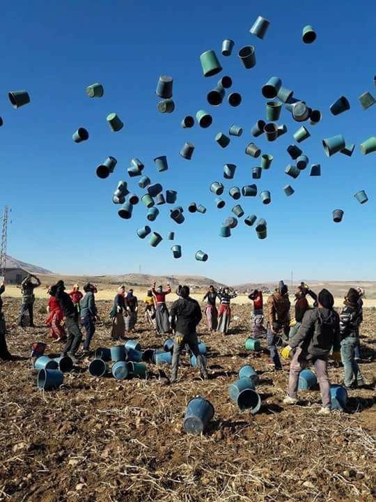 Patates hasadını bitiren işçilerin kovaları fırlatma anını yansıtan fotoğraf fenomen oldu