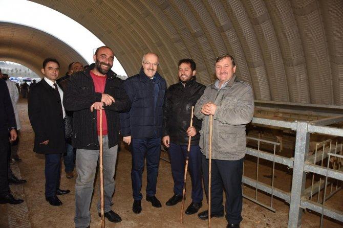 Başkan Kafaoğlu hayvan pazarını inceledi