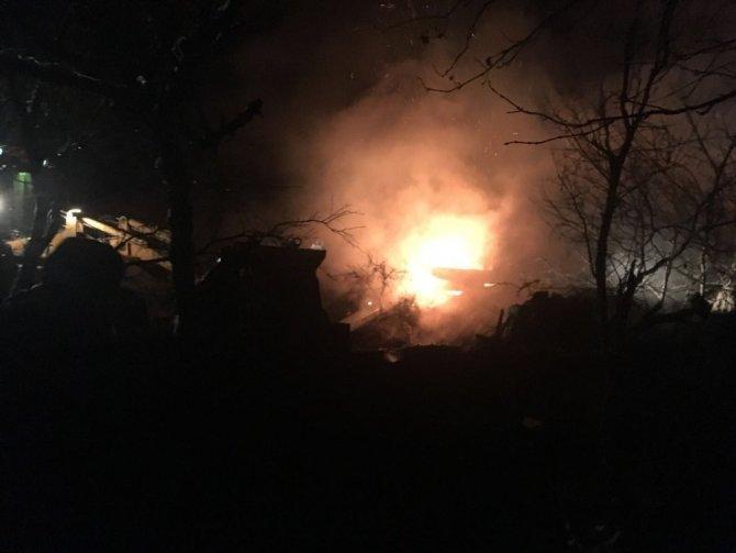 Kastamonu'da çıkan yangında hayvanlar telef oldu