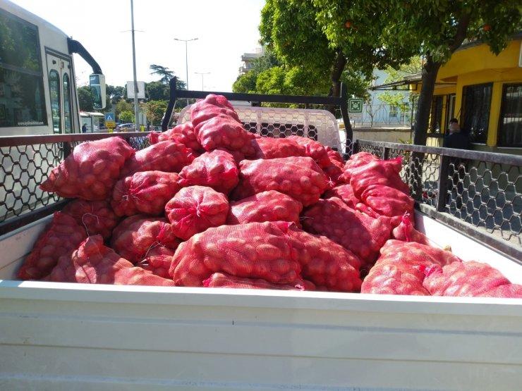 Patates dağıtımı Aydın'da devam ediyor