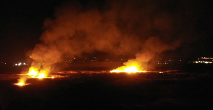 Erzincan'da kuş cennetinde yangın