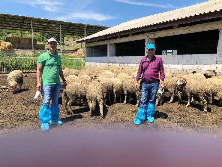 Manisa'da hayvan üreticilerine büyük destek