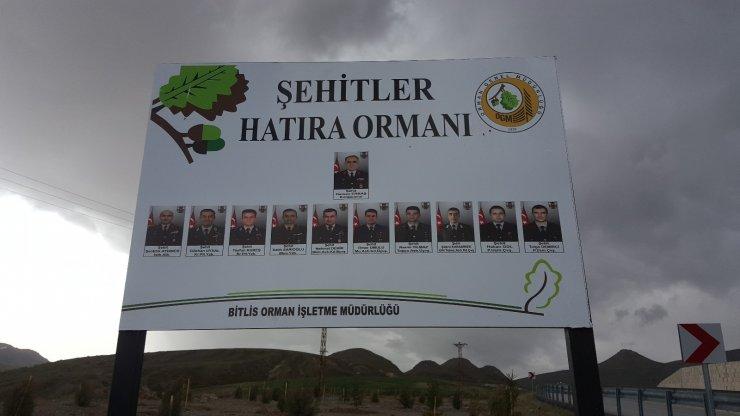 Bitlis'teki helikopter şehitleri anısına hatıra ormanı oluşturuldu
