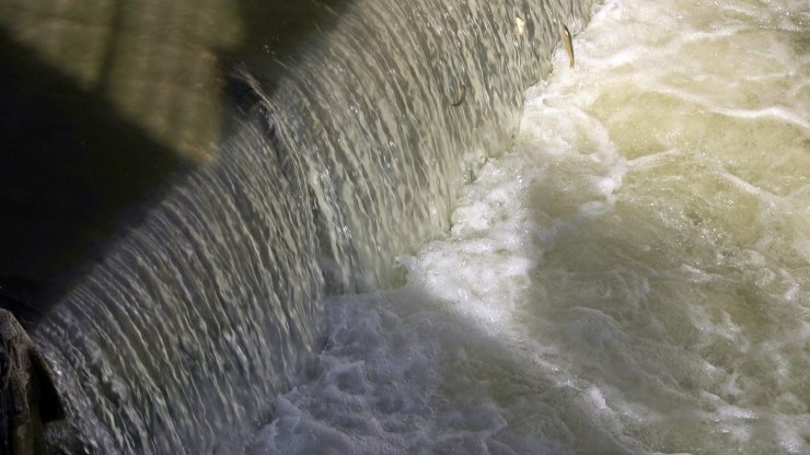 Yüksekova'da uçan balık şöleni