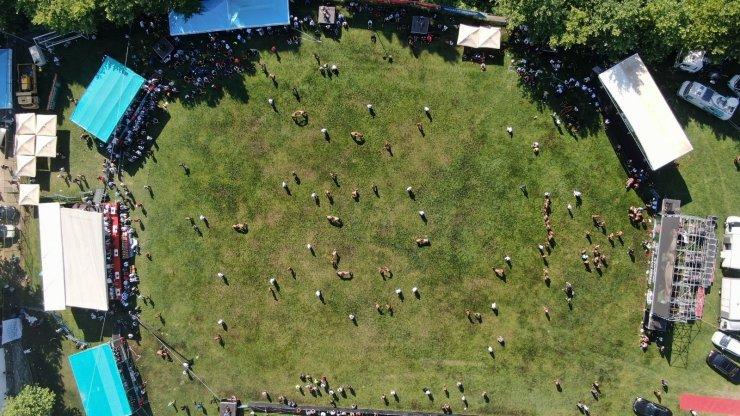 Bursa'da Geleneksel Çalı Yağlı Güreşlerine yoğun ilgi
