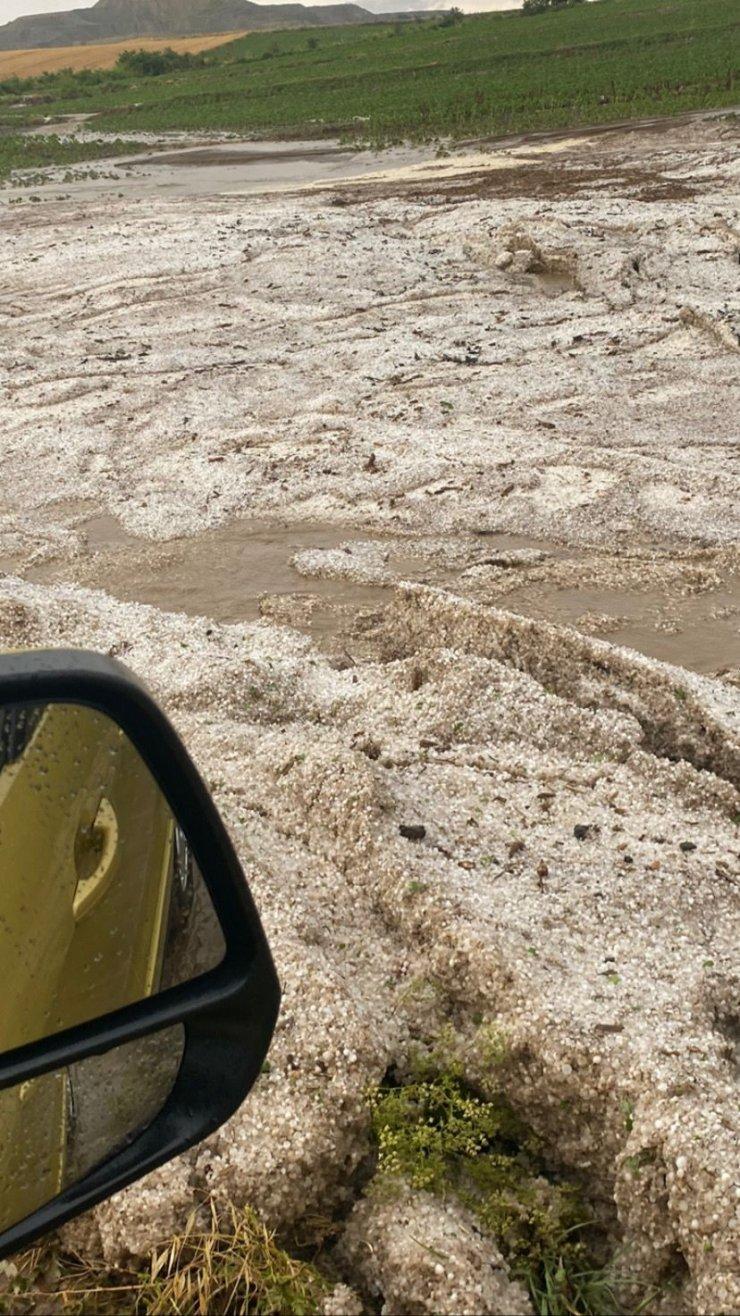 Dolu yağışı, yüzlerce dekar ekili alana zarar verdi