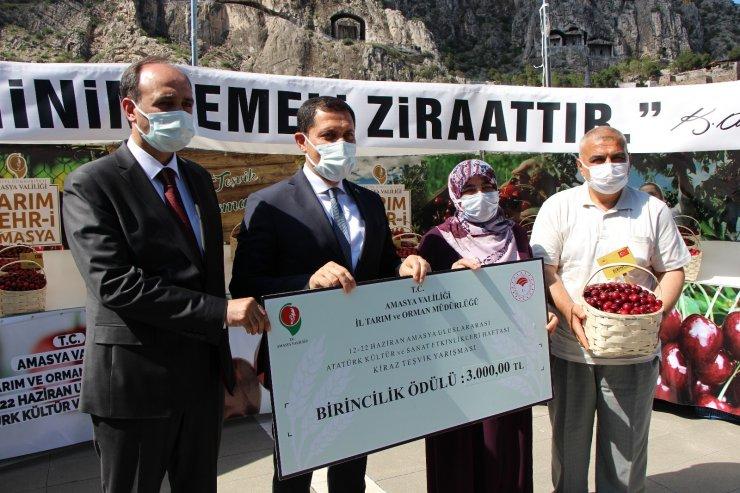 Amasya'da kirazlar yarıştı: Birinciye 3 bin TL ödül