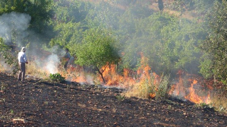 Orman yangınına ilk müdahale gazeteciler ile vatandaşlardan geldi