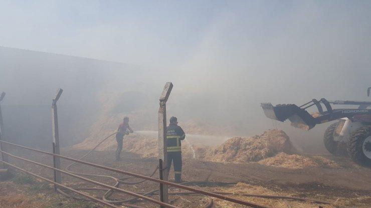 Çine ve Efeler'deki yangınlara büyükşehir itfaiyesi müdahale etti