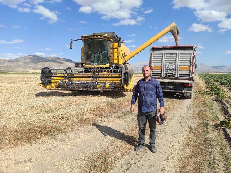Tomarza'da hasat zamanı başladı