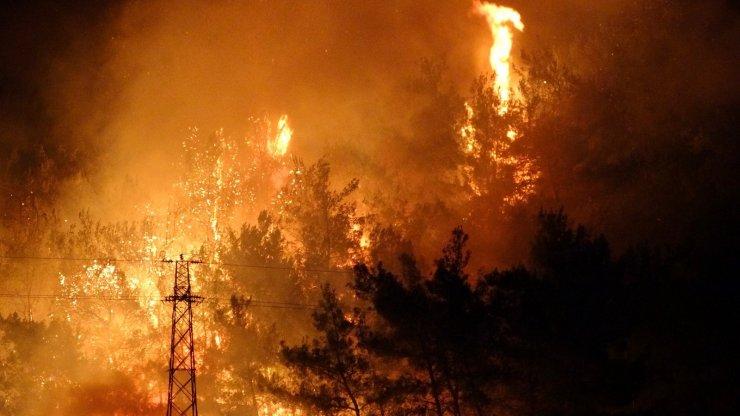 Kazmaca köyündeki ormanlık alandaki yangın karanlığını kızıla boyadı