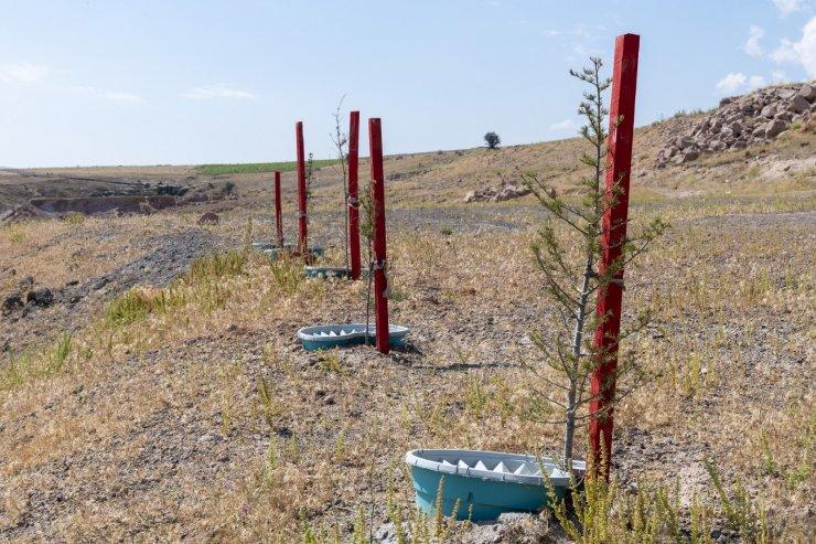 Büyükşehir ile 'daha az su tüketimi daha fazla yeşil alan'