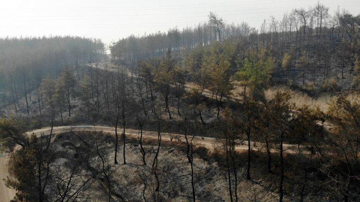 Osmaniye'deki orman yangınında yanan alanlar havadan görüntülendi