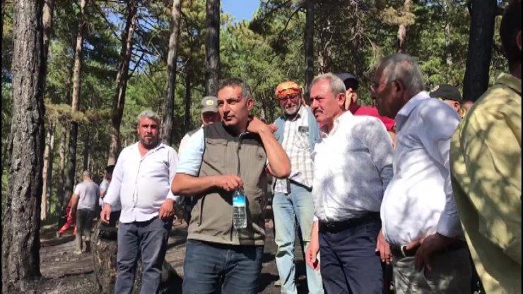AK Parti Milletvekili Tin 'Yeşil vatanı'mızı koruyalım' çağrısında bulundu