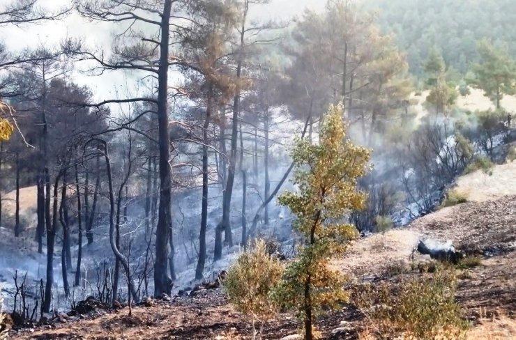 Vatandaş desteğiyle yangın kontrol altına alındı