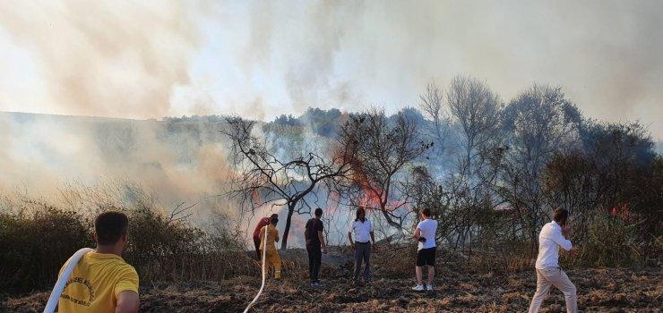 Elektrik teline çarpan atmaca arazi yangınına sebep oldu