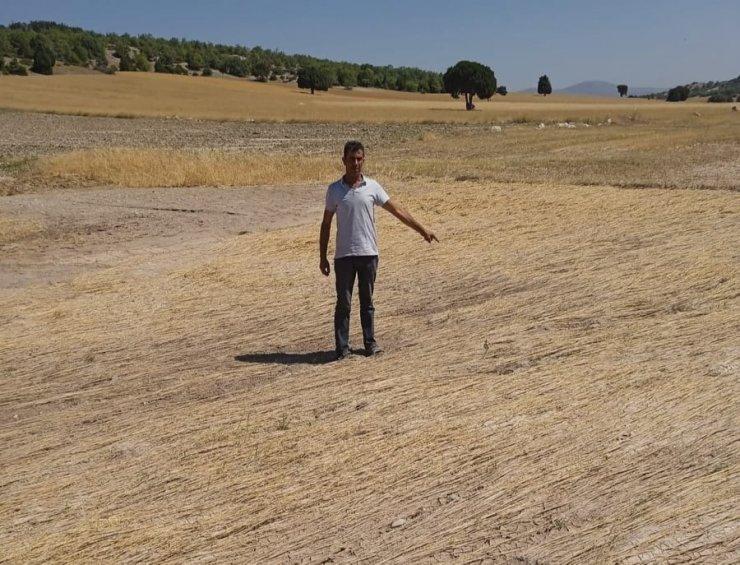 120 üretici dolu yağışı ve selden zarar gören 8 bin dekar arazileri için destek bekliyor