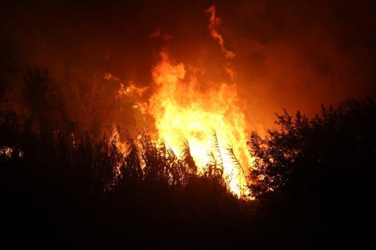 Hatay'da otluk yangını kontrol altına alındı