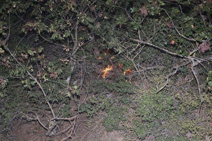 Zeytinlikte çıkan yangın, zamanında müdahale ile büyümeden kontrol altına alındı