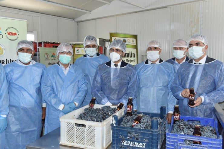 DÜ Ziraat Fakültesi üzüm ürünleri işleme tesisi açılışı ve tadım etkinliği yapıldı