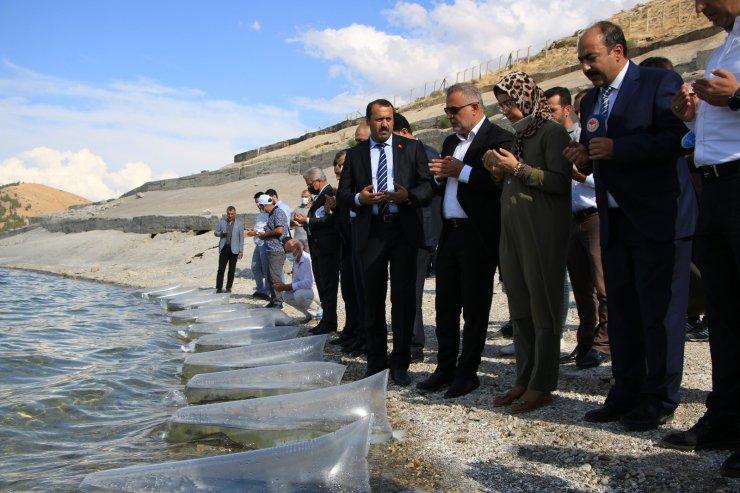 Elazığ'da 21 bin ton balık üretimi