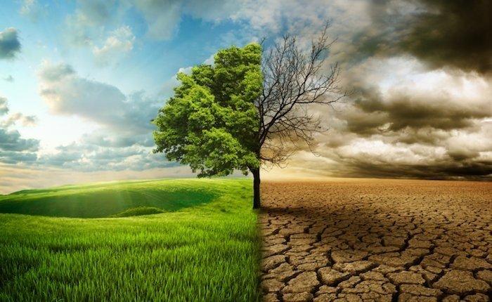 Yeşil Mutabakat fırsata çevrilmeli